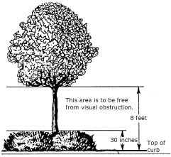 Tree Restrictions Diagram